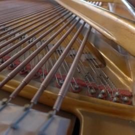 akustische Anlage Flügel Detail (Seiler)