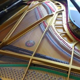 akustische Anlage Flügel