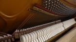 Klavier_gerbaucht_bergmannstrasse