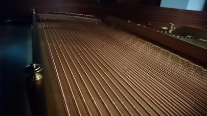 Basssaiten Bezug Steinway