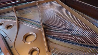 Bechstein_m_strings