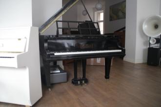 Fluegel_piano_preiswert